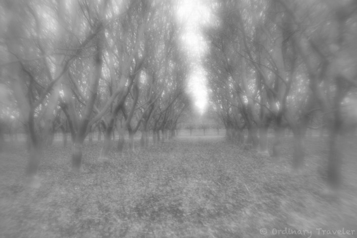 How to Create Surreal Photos: Review of Lensbaby Creative Effects Kit