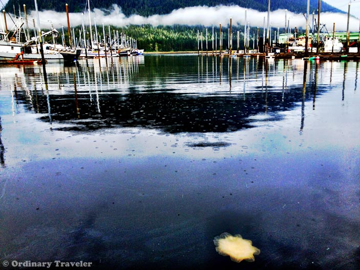 See What You're Missing in Southeast Alaska