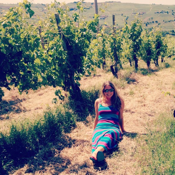 Vineyards in Val Tidone - Emilia Romagna, Italy