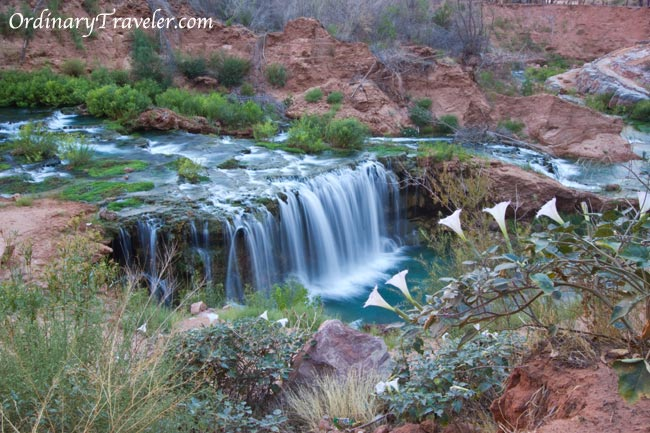 Navajo Falls Waterfall -Arizona