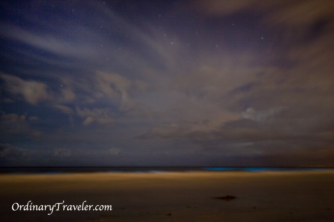 Night Photography - Red Tide Bioluminescence