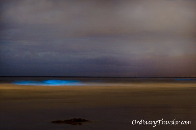 Bioluminescent Ocean - Night Photography - Red Tide