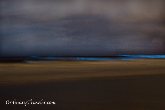 Red Tide Bioluminescence San Diego 2011