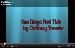 Red Tide San Diego