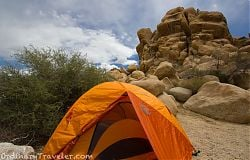Indian Cove Campground - Joshua Tree