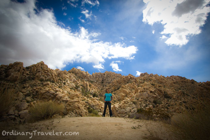 Camping in Joshua Tree - No Rattlesnakes This Time!