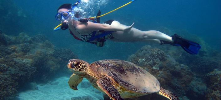 Snuba Maui