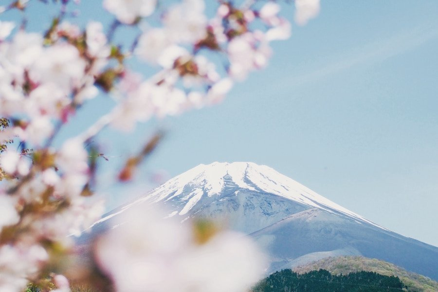 Japan Travel Tips: Everything You Need to Know