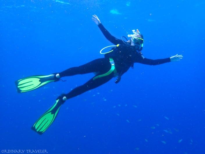 bonaire caribbean diving