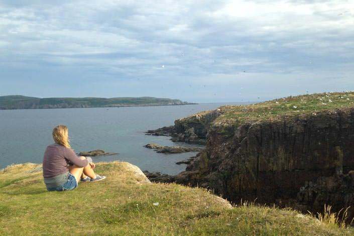 Puffin Viewing Site in Elliston Newfoundland