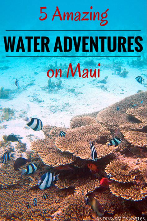 Five Amazing Water Adventures on Maui