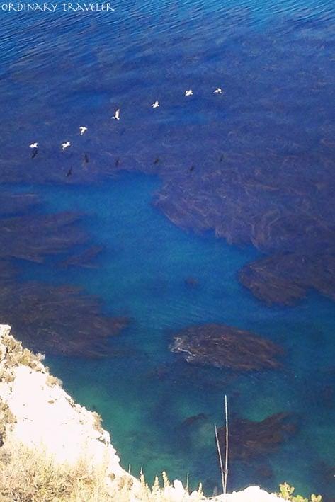 Channel Islands Santa Cruz Island Scorpion Anchorage