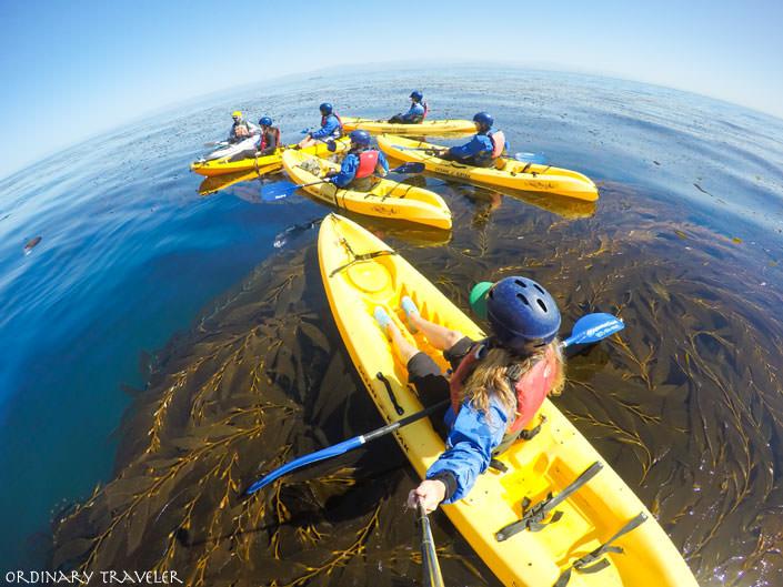Kayaking Channel Islands Santa Cruz Island