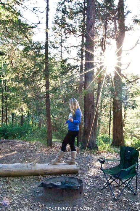 Best Spots to Camp in California Palomar Mountain