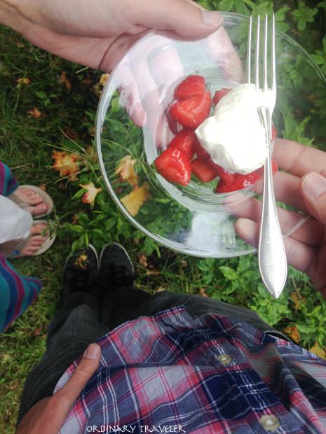 Sweden Midsummer Strawberries & Cream