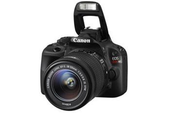Best DSLR Cameras for Travel Photography
