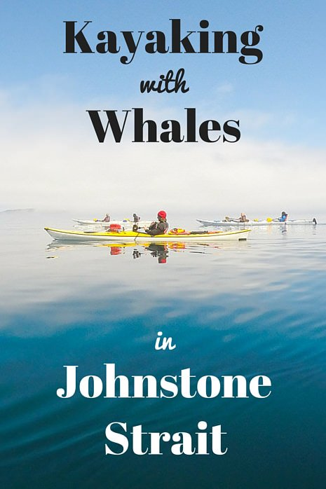 Kayaking with Whales in Johnstone Strait, North Vancouver Island