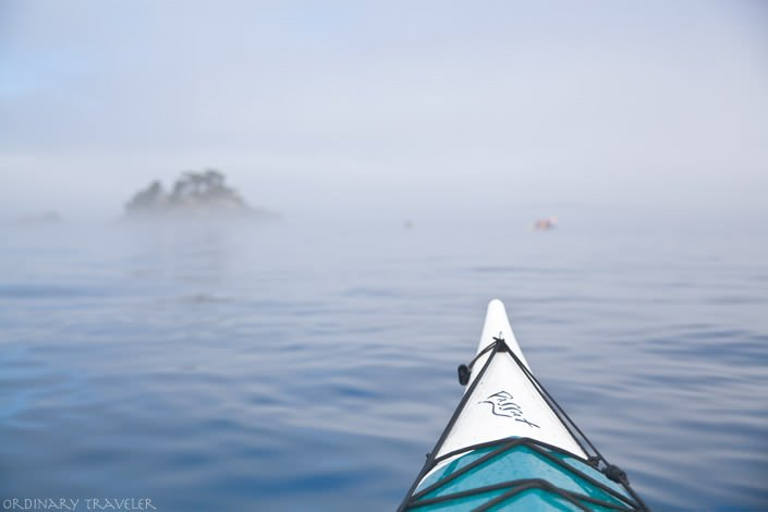 Kayaking with Whales in the Johnstone Strait - North Vancouver Island