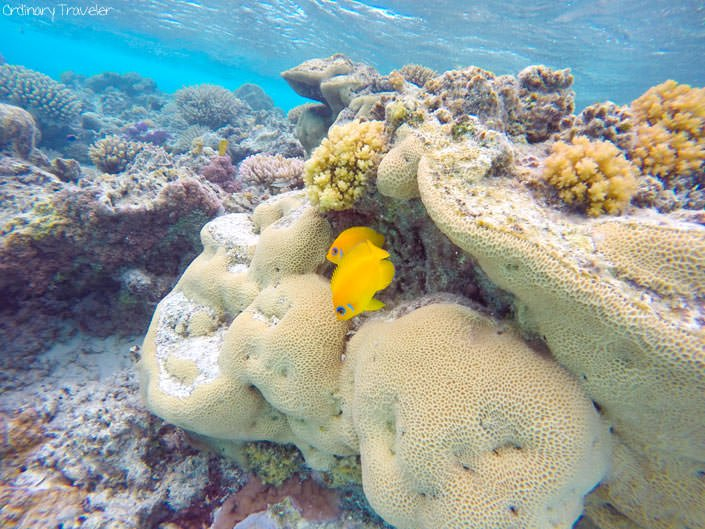 Cook Islands Sample Itinerary