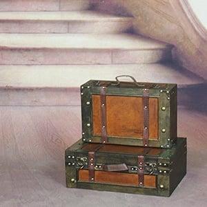 Vintage Suitcase Trunks for Travel Home Decor