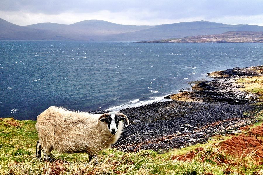 Scotland Travel Packing Guide