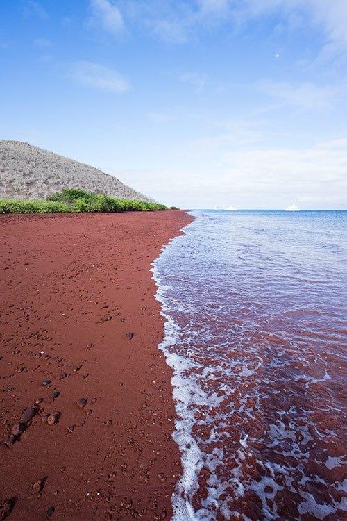 Rabida Island Tour Galapagos