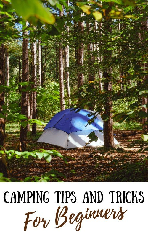 Camping Tips for Beginners: Equipment, Booking, Budget Tips & More!